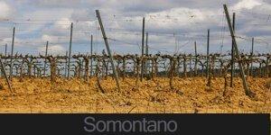SOMONTANOo