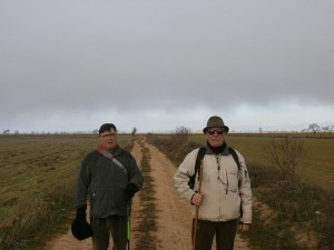 Camino de Pertusa
