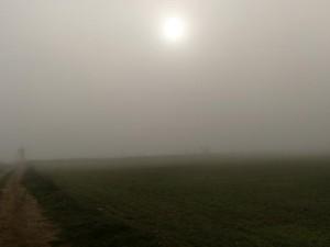 La niebla comienza a envolverlo todo. Camino de Pertusa