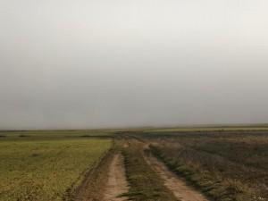 Camino de Pertusa por la antigua calzada romana. La niebla no termina de despejar