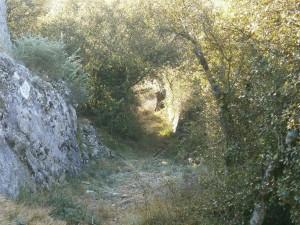 Camino de Salinas de Hoz