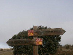 """Camino de Pertusa. Por la antigua calzada romana, que es también """"Camino de Santiago"""""""
