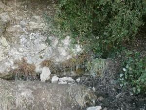 Fuente subiendo a Aguilar