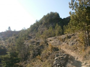 Senda de subida a la sierra de Arbe
