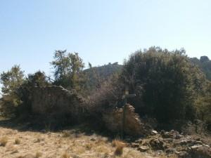 Mesón de la Sierra. Sierra del Arbe