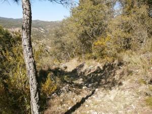 Castillo de Escanilla. Senda de bajada al pueblo