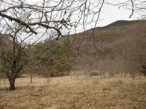 Congosto de Obarra. Terrenos de cultivo