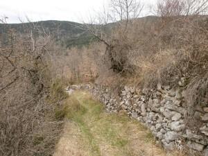 Camino de bajada a Ballabriga