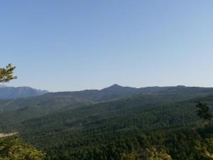 Montes de Pallaruelo. Camino de Formigales