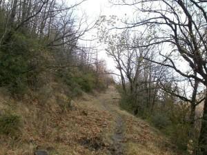 Camino de Calvera