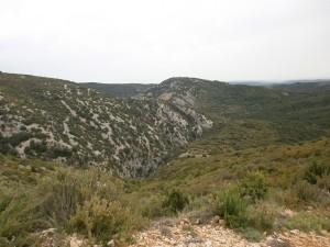 Estrechos de Tamara por donde discurre el río Alcanadre