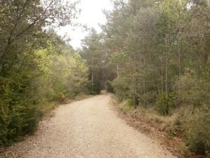 Camino de Bierge