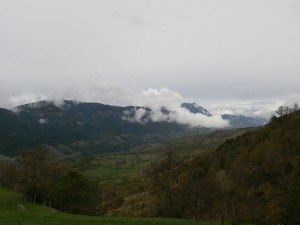 Merli. Valle de Bacamora