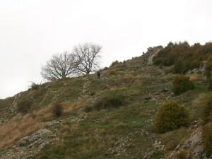 Merli. Ubicación del extinto castillo en lo más alto