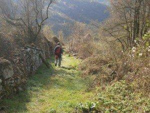 Ballabriga. Camino del Monasterio de Obarra