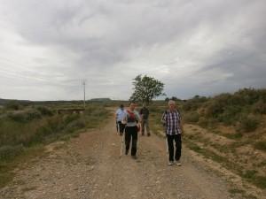 Ilche. Camino de Selgua