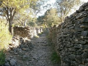 Rodellar. Camino de Cheto