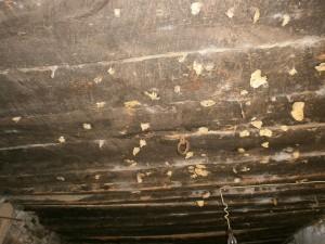 """San Saturnino. """"Almas"""" de los animales que se mataban en las casas pegadas al techo"""