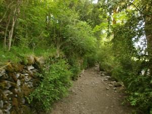 Congosto de Ventamillo. Camino de Seira
