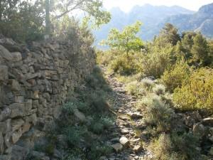 Camino de Esterún
