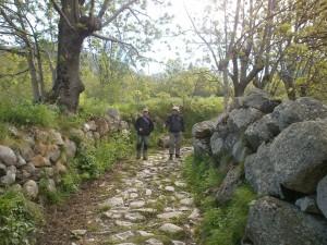 Cerler. Camino de la ermita de San Pedro mártir