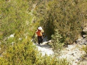 Camino del Mesón de Ligüerre