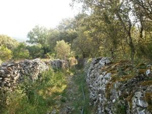 Camino de Lecina a Almazorre