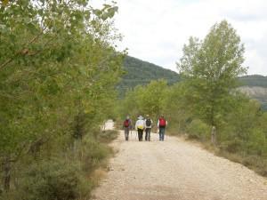 Camino de Boltaña, por la escollera del río Ara