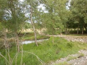 Soto de Guaso, camino de Boltaña
