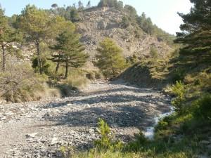 Camino de San Vicente. Río Forcaz
