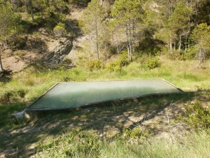 Camino de San Vicente. Balsa de agua forestal