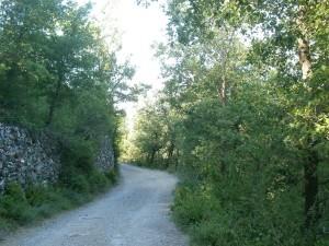 Camino de Araguás