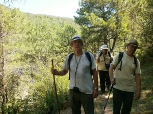 Camino de El Pueyo de Araguás