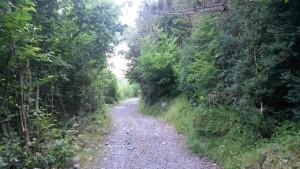 Camino de subida al valle de Estós