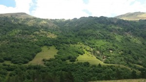 Valle de Estós. Praderas alternando con los bosques