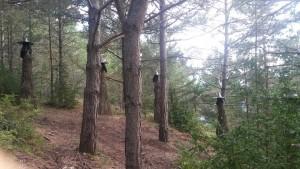 Laspaúles. Parque temático de las brujas