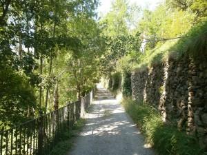 Guayente. Camino de Sahún