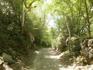 Camino Casa Conques