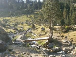 Camino del Pla d'Estañ