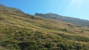 Laderas de hierba fresca en el Valle de Pinarra