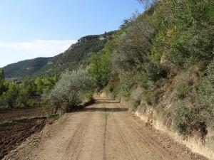 Camino de Perarrúa