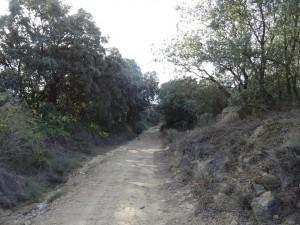 Camino de Bespén