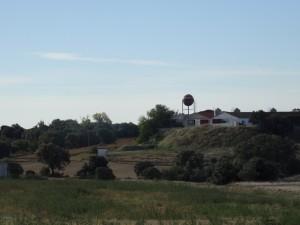 El Pardo. Camino de Bespén