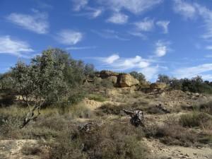 Afloramiento de piedra arenisca. Camino de Bespén