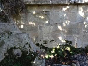 Fuente entre Bespén y Blecua