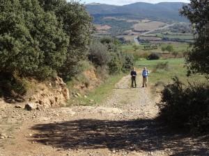Camino de Tolva. Al fondo la sierra del Montsec