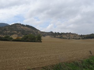 Camino de Lascuarre. Campos de labor