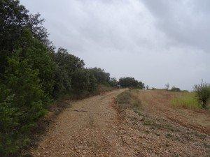 Camino de Ponzano