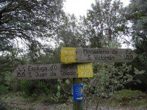 Camino de San Victorián
