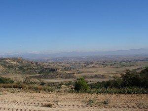 Llanos de Monesma e Ilche